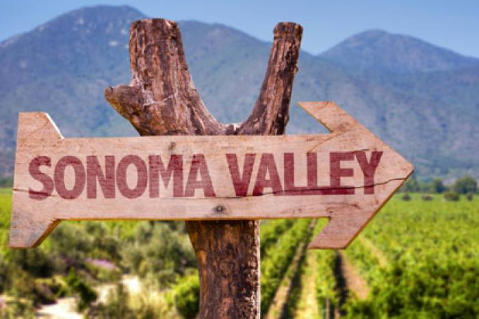Half Day Wine Country Tour (Sonoma Valley)