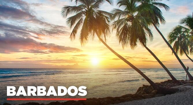 Barbados Night Life and Dining