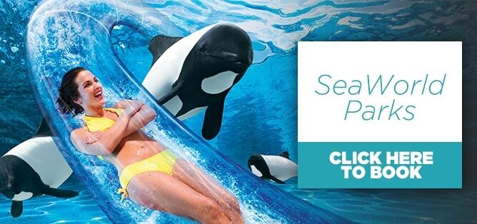 Seaworld Attractions