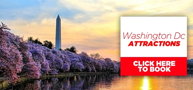 Washington Attractions