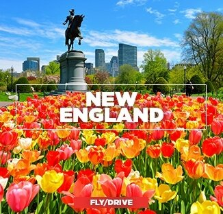 New England Flu Drive