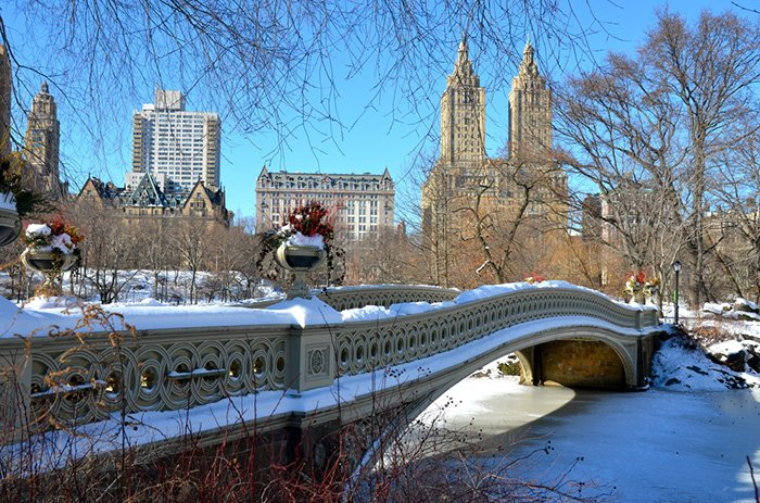 central-park-winter