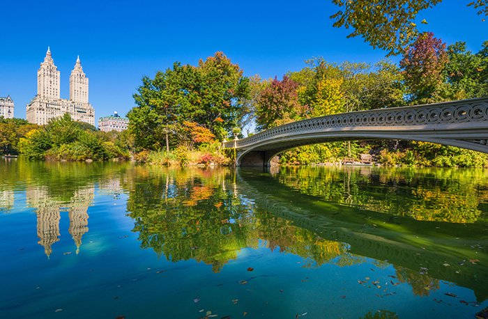 bow-bridge-central-park