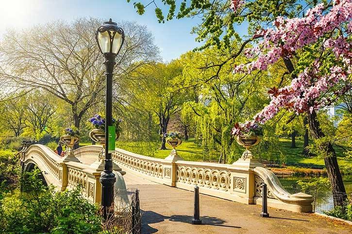 new-york-travel-guide