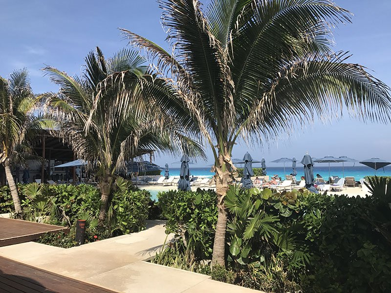 secrets-the-vine-beach