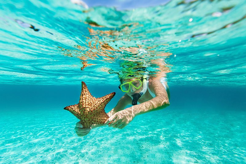 royal-caribbean-shore-excursions