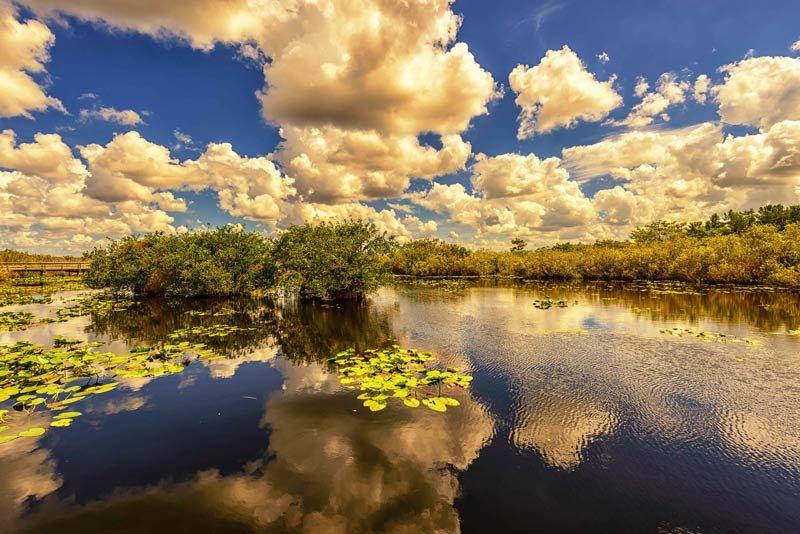 the-everglades-florida